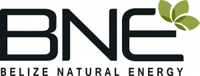 BNE-Full-Color-Logo-300x114